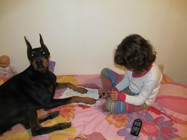 Painting dog's nails